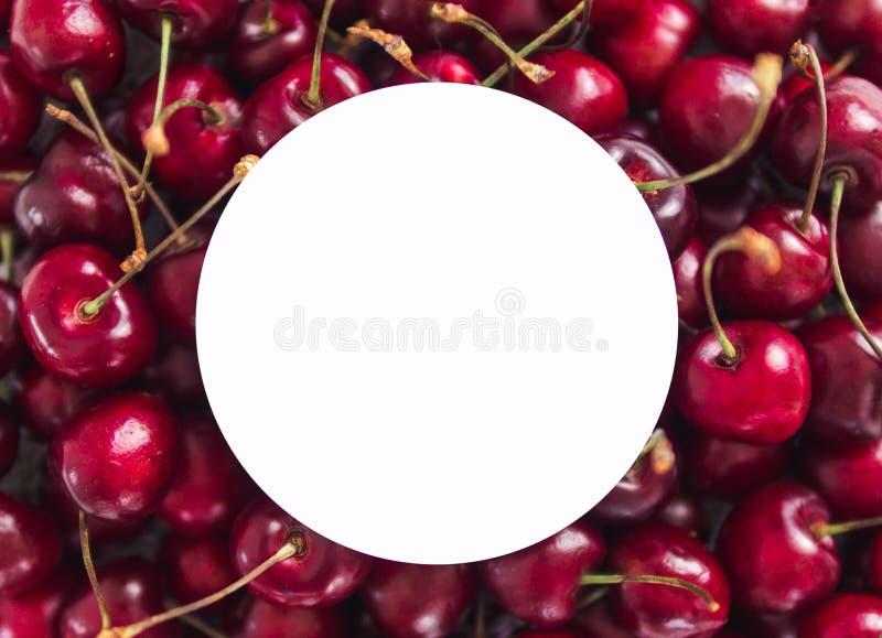 Kers met witte cirkel, exemplaarruimte royalty-vrije stock fotografie