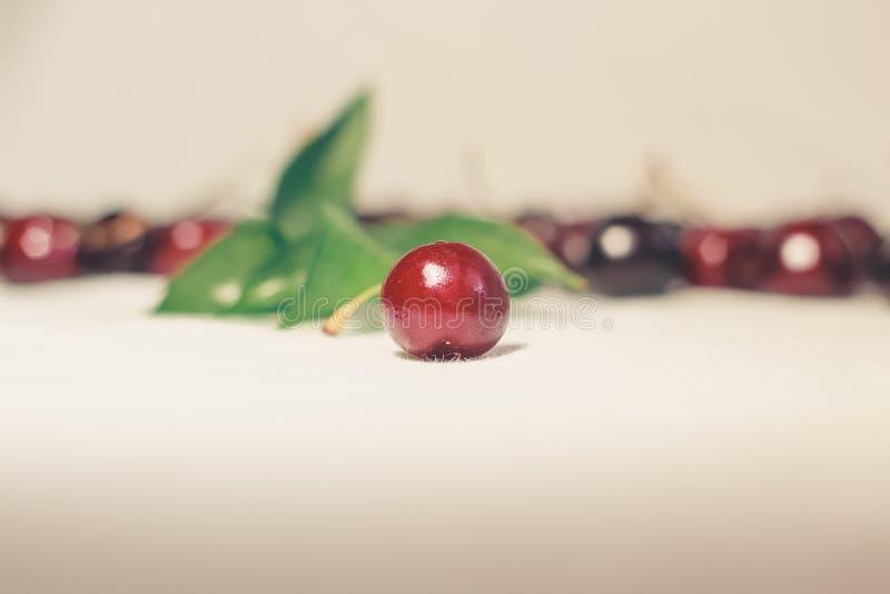 Kersen op witte achtergrond stock fotografie