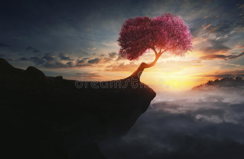 Kersenboom op berg stock foto