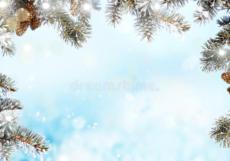 Kerstachtergrond met fileboomtak Kerstmis en vrolijke Nieuwjaarsgroet met kopieerruimte stock foto