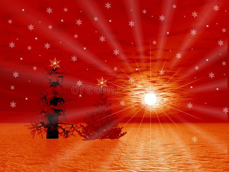 Kerstbomen en zon