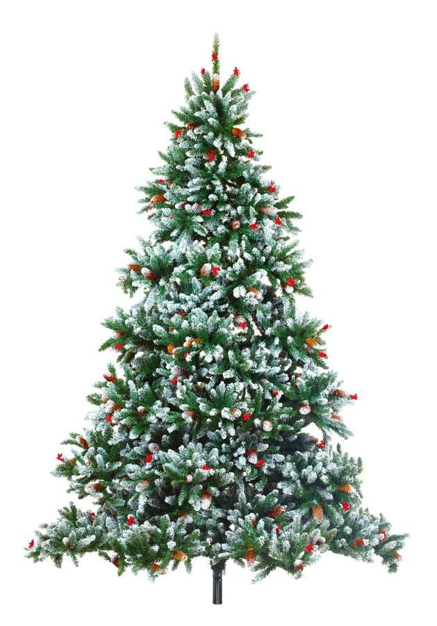 Kerstboom. stock fotografie