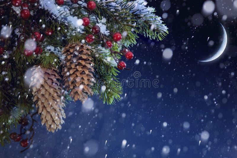 Kerstboom behandelde sneeuw op blauwe nachthemel stock foto's