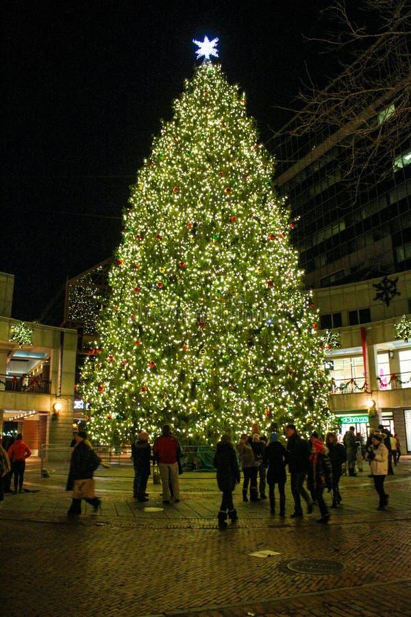 Kerstboom bij Faneuil-Zaal, Boston, doctorandus in de letteren. royalty-vrije stock afbeelding