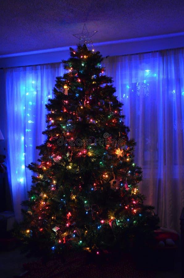 Kerstboom bij nacht stock fotografie