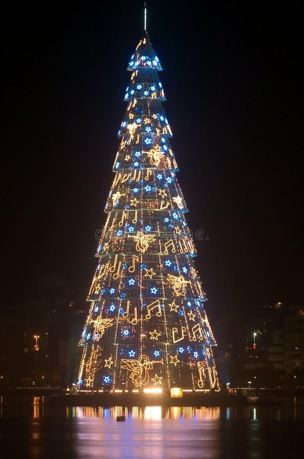 Kerstboom bij nacht stock foto's