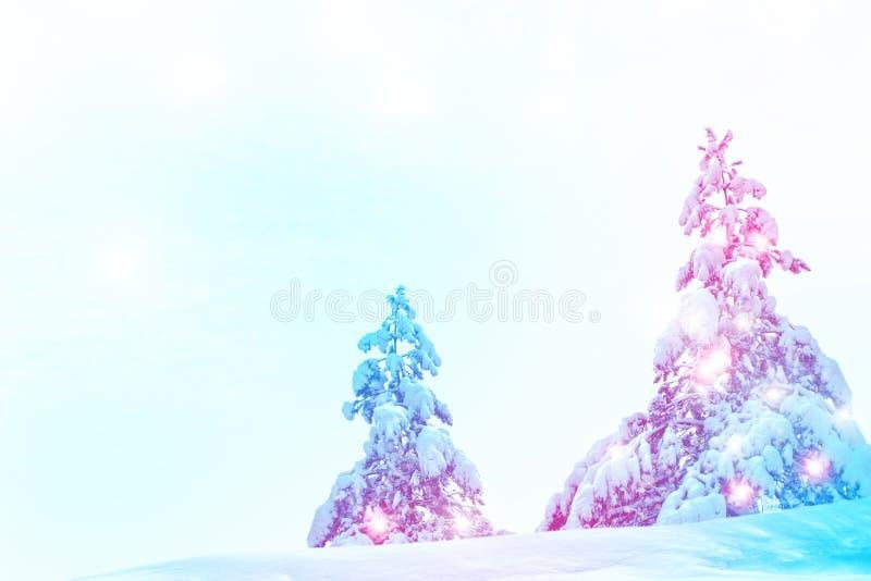 Kerstboom die op witte achtergrond wordt ge?soleerdn stock foto