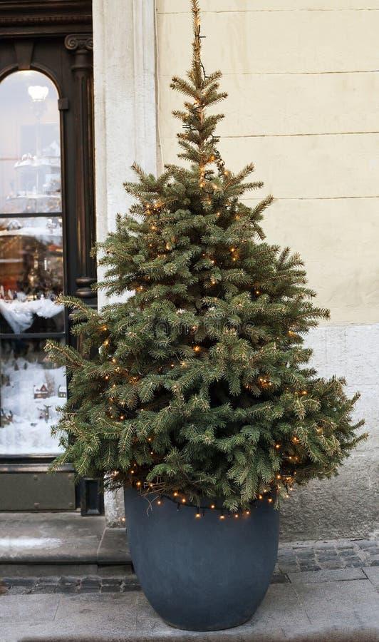 Kerstboom met lichtgevende slinger in pot dichtbij huis stock afbeelding