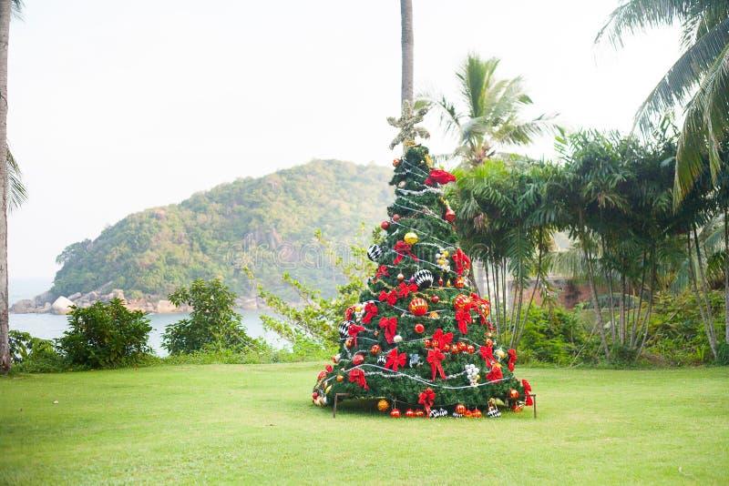 Kerstboom op Mooie Tropische Achtergrond royalty-vrije stock afbeeldingen