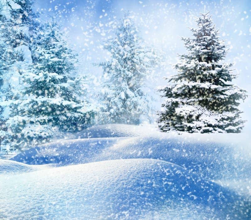 Kerstboom in sneeuw royalty-vrije stock foto
