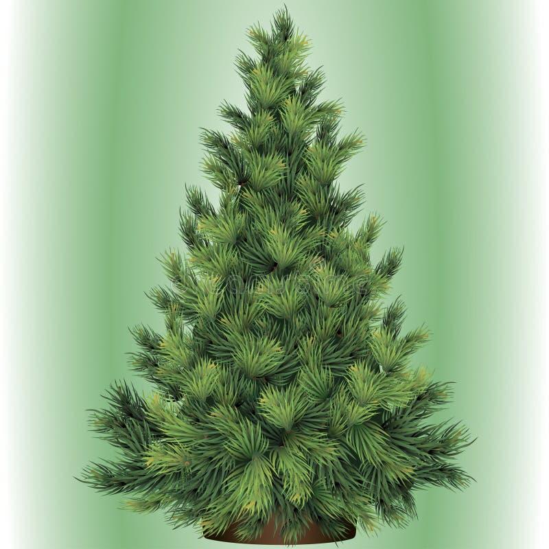 Kerstboom voor Nieuwjaar stock illustratie