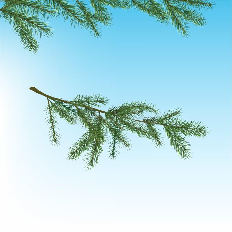 Kerstboomtak vector illustratie