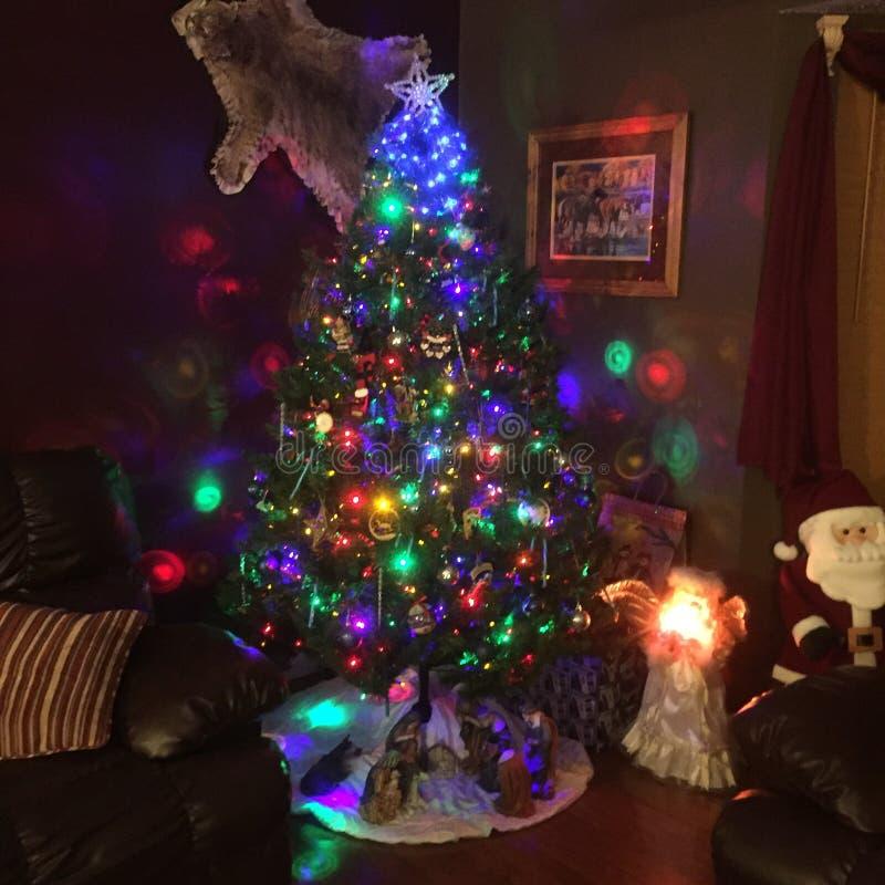 Kerstboomtijd royalty-vrije stock afbeeldingen