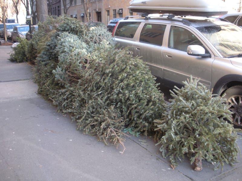 Kerstboomverwijdering, Hogere het Westenkant, NYC, NY, de V.S. royalty-vrije stock fotografie