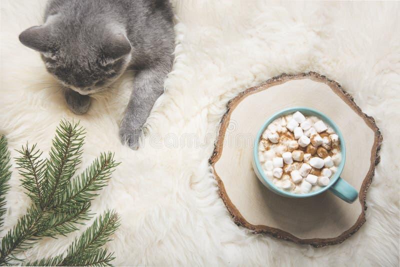 Kerstman Klaus, hemel, vorst, zak Kop van koffie, Britse kat Rust thuis Hoogste mening De ruimte van het exemplaar Steenbeeld royalty-vrije stock afbeelding
