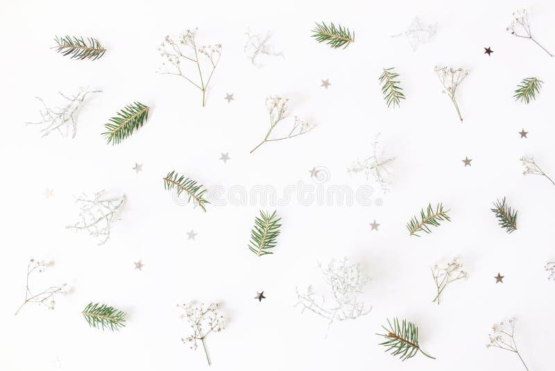 Kerstmis bloemenpatroon De de wintersamenstelling van groene nette boomtakken, baby` s adem bloeit, Calocephalus-brownii royalty-vrije stock afbeeldingen