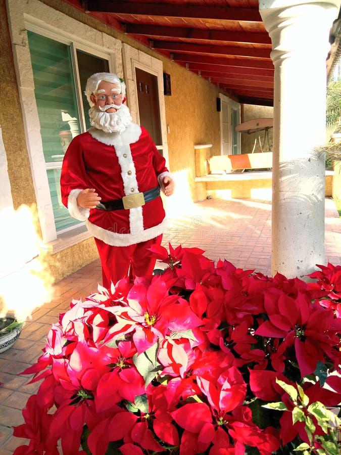 Kerstmis in Cuernavaca royalty-vrije stock foto's