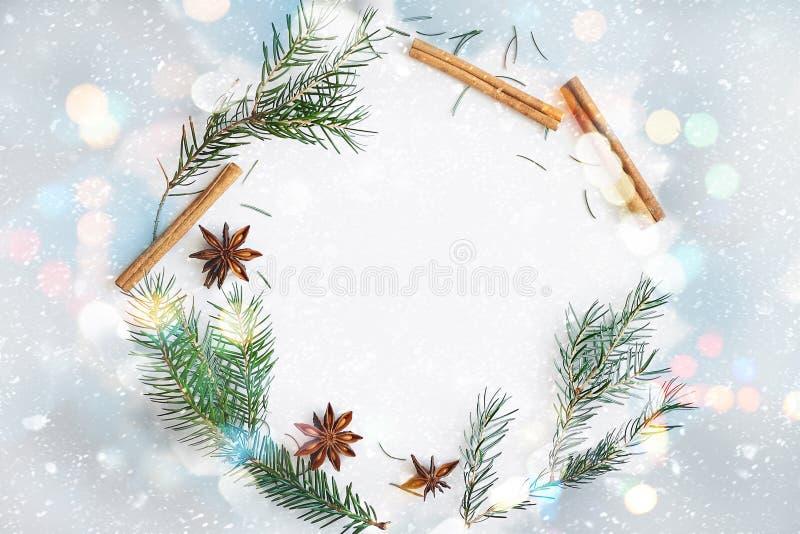 Kerstmis en de Nieuwe het hele jaar door samenstelling van de kaderkroon Spartakken, steranijsplant, kaneel op pastelkleur blauwe royalty-vrije illustratie