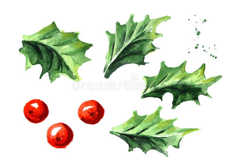 Kerstmis en Nieuwjaar geplaatste de bessenelementen van de symbool decoratieve Hulst Waterverfhand getrokken die illustratie, op  vector illustratie