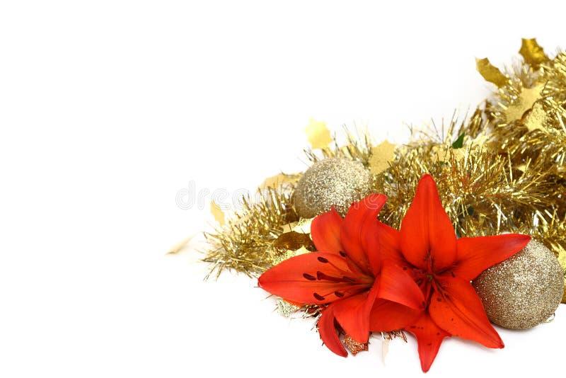 Kerstmis lillies met klatergoud royalty-vrije stock foto's