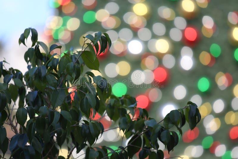 Kerstmis in Nazareth stock afbeelding