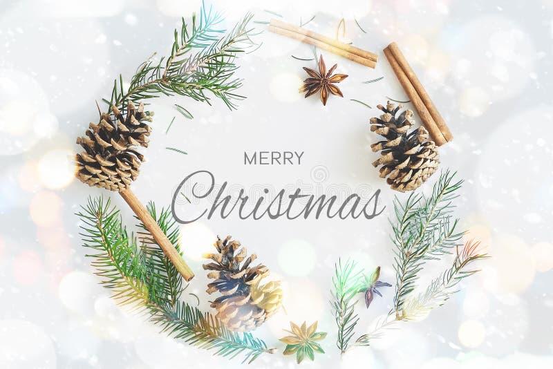 Kerstmis om de kaart van de kaderkroon met tekst vrolijke Kerstmis De spar vertakt zich, kegels, steranijsplant, kaneel op pastel royalty-vrije illustratie