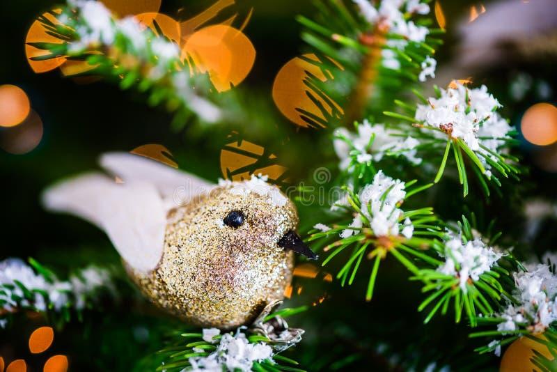 Kerstmis Robin Bird op de Kerstmisboom stock foto