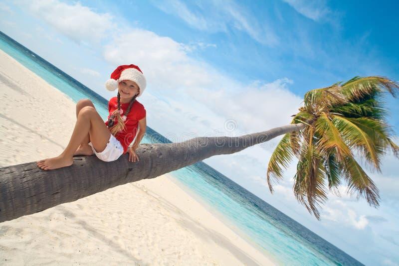 Kerstmis tropisch strand van het jonge geitje stock fotografie