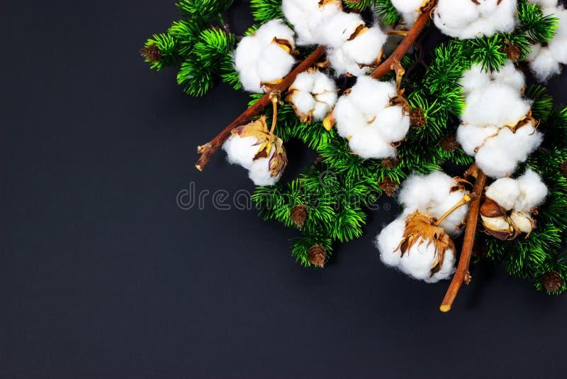Kerstmisachtergrond met de katoenen Ruimte van pijnboomtakken en voor tekst royalty-vrije stock foto