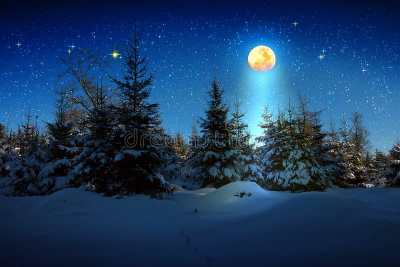 Kerstmisachtergrond met sterren en grote maan in de winterbos royalty-vrije stock fotografie