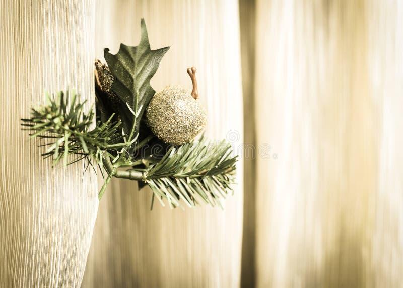 Kerstmisblad/Tak en Apple stock fotografie
