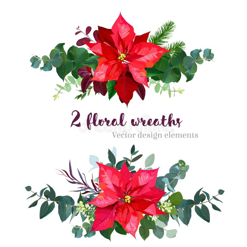 Kerstmisboeketten van rode poinsettiabloemen die worden geschikt stock illustratie