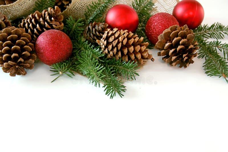 Kerstmisbol, Denneappel en Altijdgroene die Grens op Wit wordt geïsoleerd stock fotografie