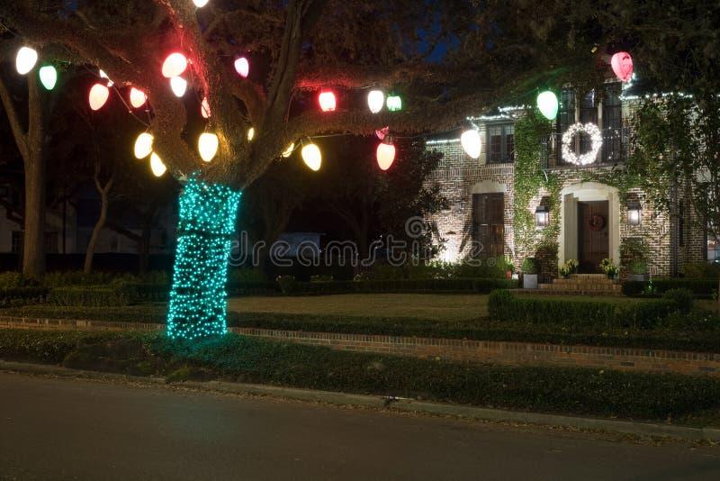 Kerstmisdecor op de boom De winter, Nacht, Houston, Texas, de V.S. stock fotografie