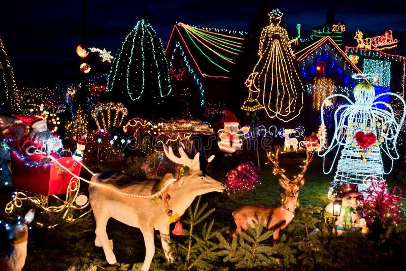 Kerstmisdecoratie in de tuin stock afbeelding