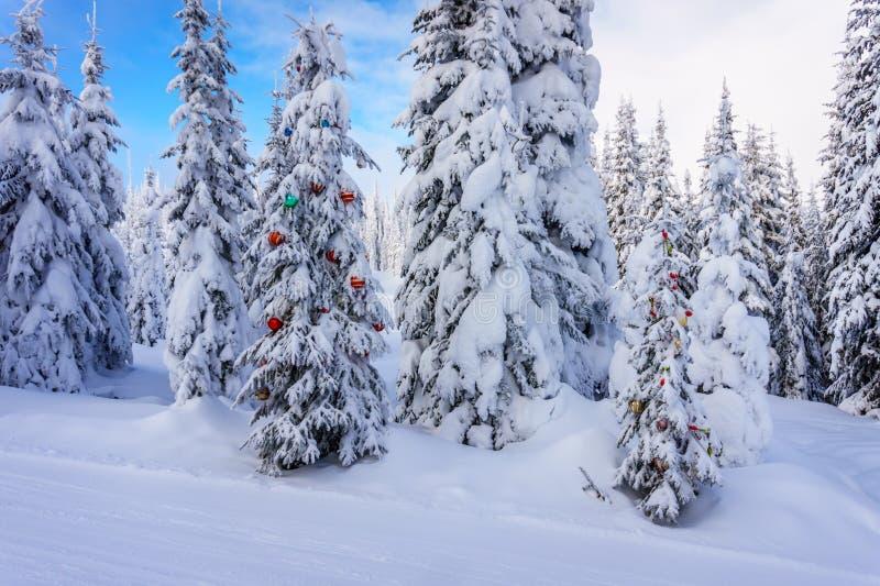 Kerstmisdecoratie op Sneeuw behandelde Pijnboombomen in het Bos royalty-vrije stock afbeeldingen
