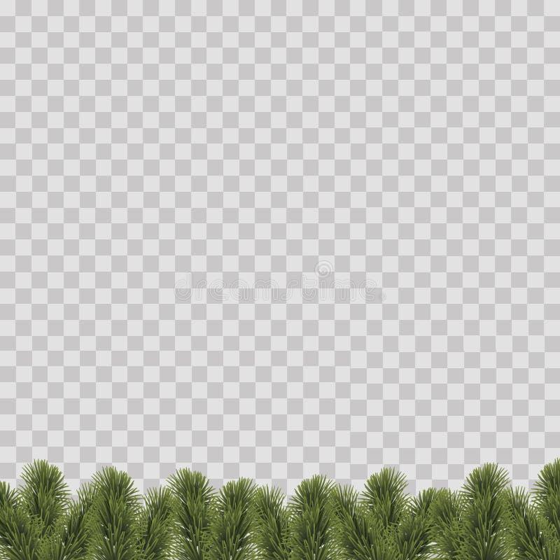 Kerstmisgrens met de takken van de pijnboomboom op transparante achtergrond Vector stock illustratie