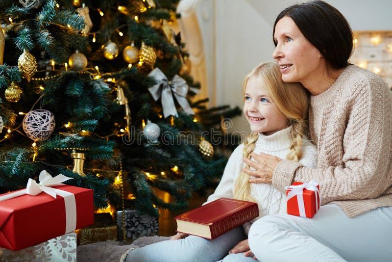 Kerstmisidyl royalty-vrije stock fotografie