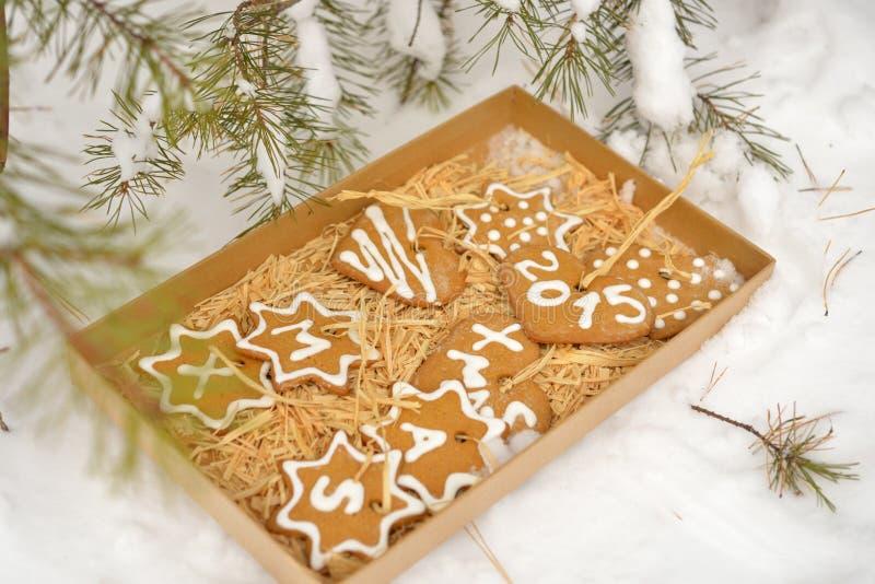 Kerstmiskoekjes in een doos op een sneeuw stock fotografie