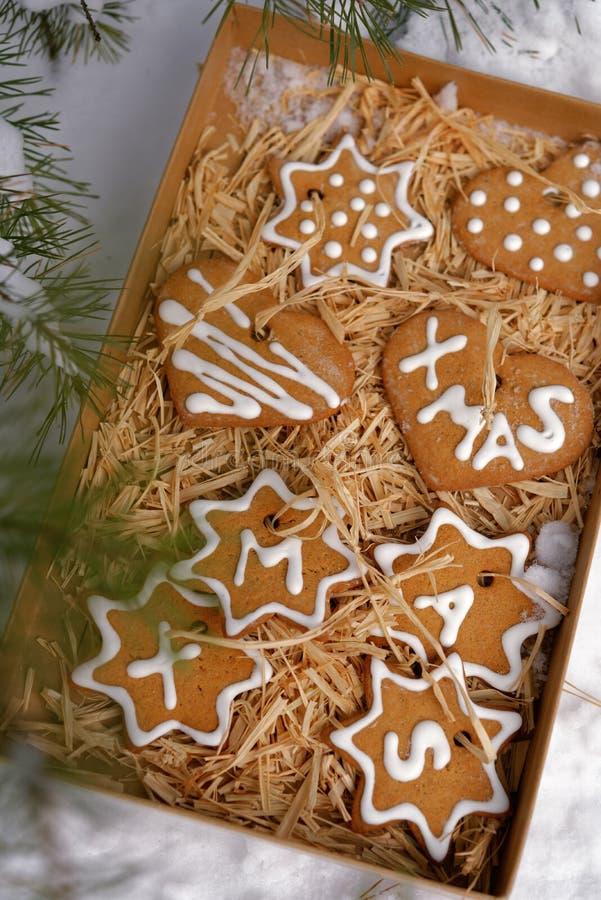 Kerstmiskoekjes in een doos op een sneeuw royalty-vrije stock afbeelding