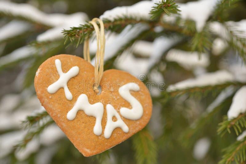 Kerstmiskoekjes op een spar in openlucht stock afbeeldingen