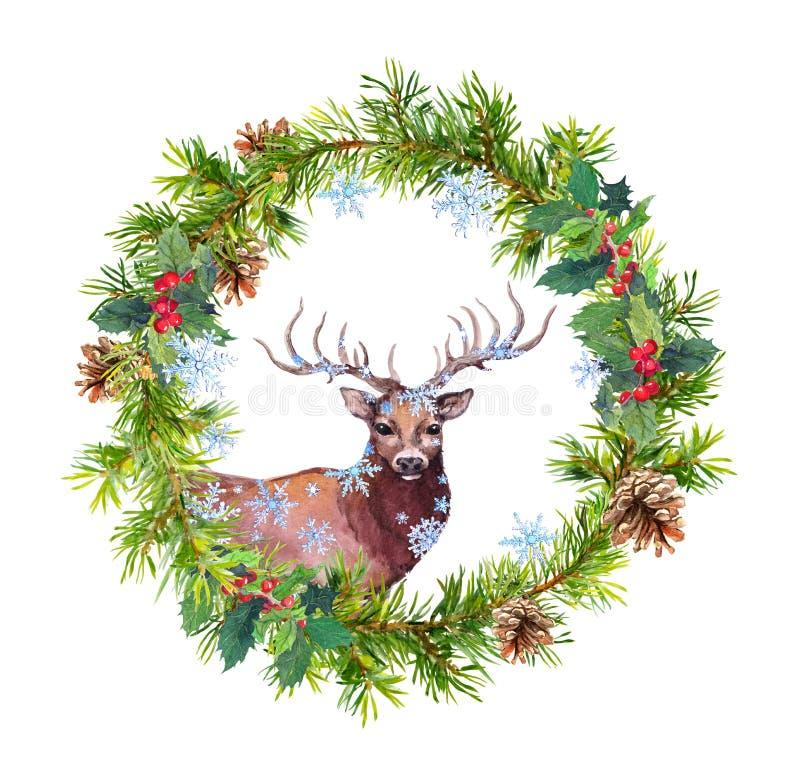 Kerstmiskroon met hertendier, sneeuwvlokken Waterverf - nette boomtakken, hulst, kegels vector illustratie