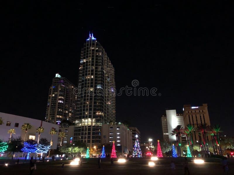 Kerstmislichten in een stad Kerstbomen en palmenbomen Zuidelijke Kerstmisviering stock foto's