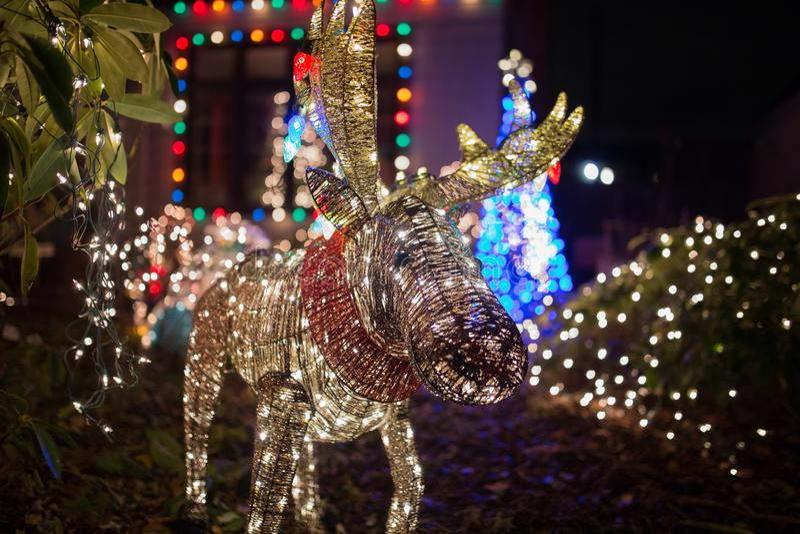 Kerstmislichten in een vorm van een hert royalty-vrije stock afbeelding