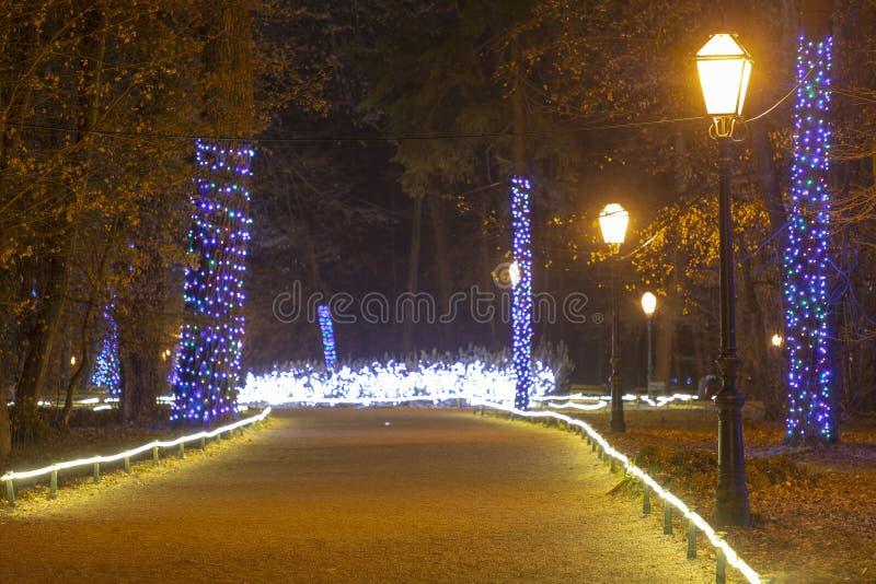 Kerstmislichten in komst in Zagreb stock fotografie