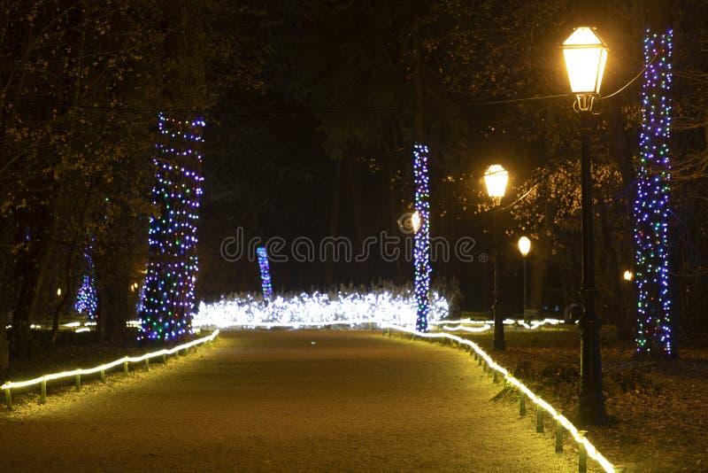 Kerstmislichten in komst in Zagreb royalty-vrije stock foto