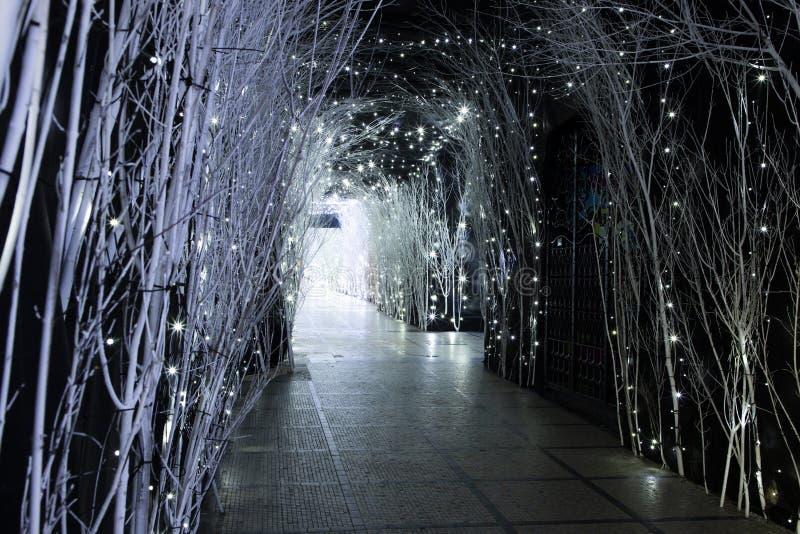 Kerstmislichten in komst in Zagreb royalty-vrije stock fotografie