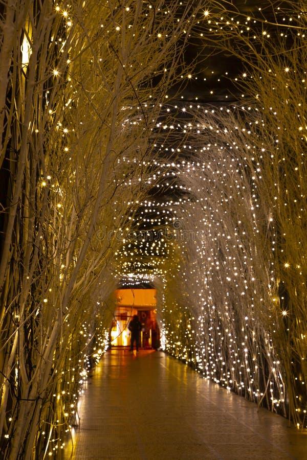 Kerstmislichten in komst in Zagreb royalty-vrije stock afbeeldingen
