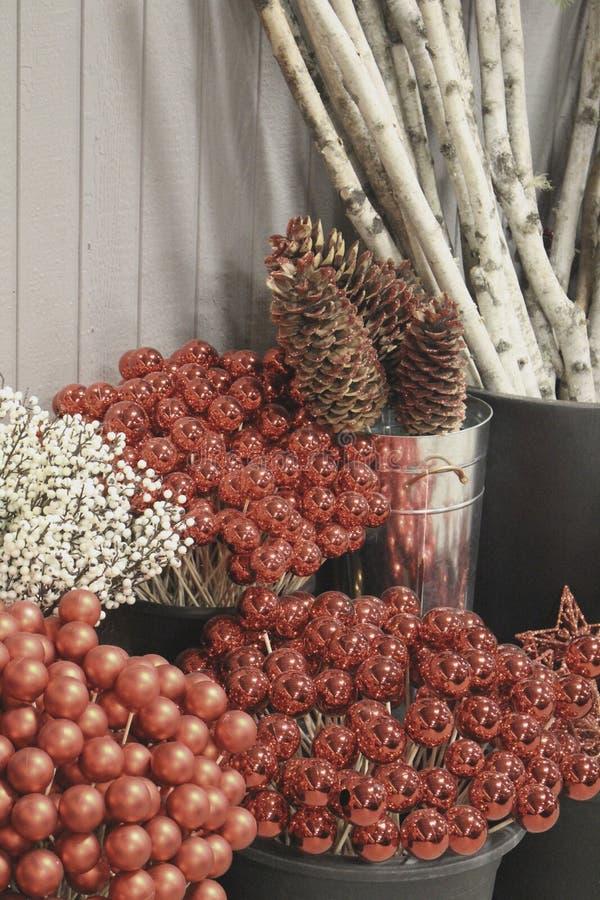 Kerstmisornamenten met denneappels en besnoeiingsberk royalty-vrije stock foto's
