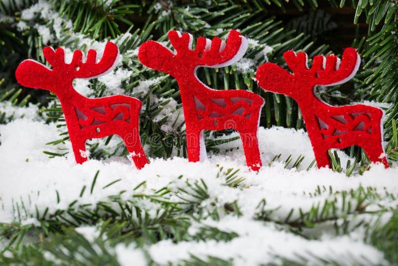 Kerstmisornamenten op een Kerstboomtakjes stock afbeeldingen